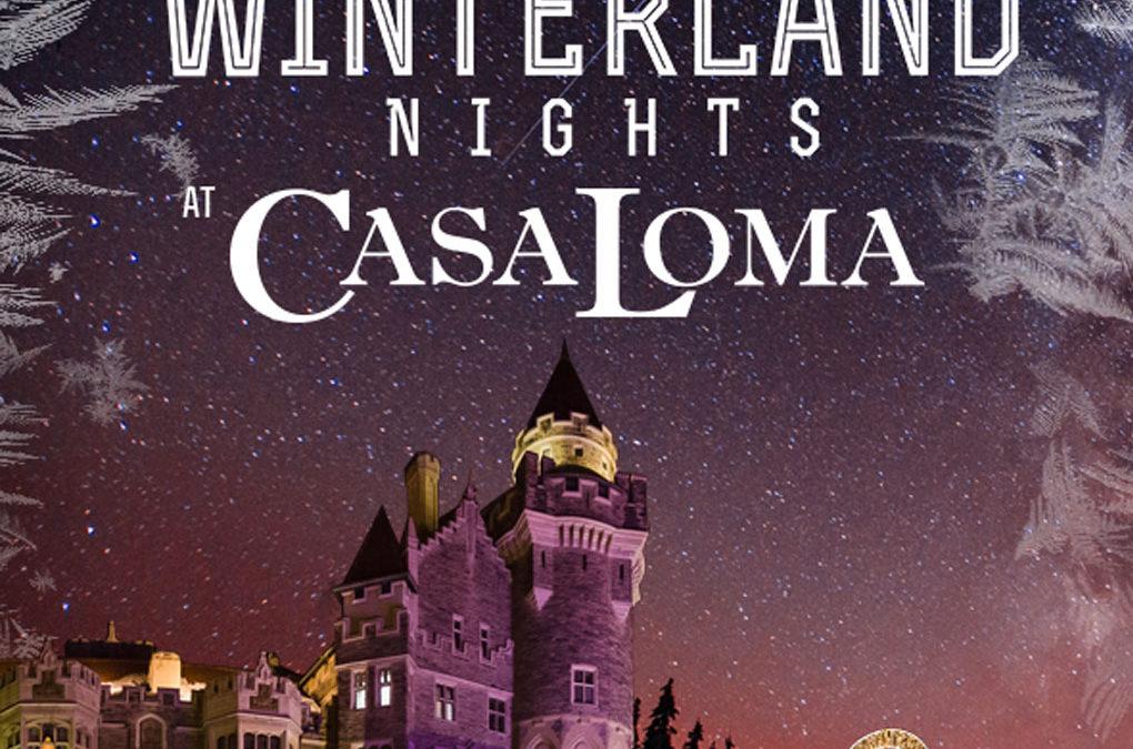 MAGICAL WINTERLAND NIGHTS